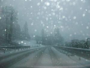 neve cortenova 21 02 13