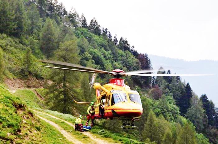 elicottero bimba cane