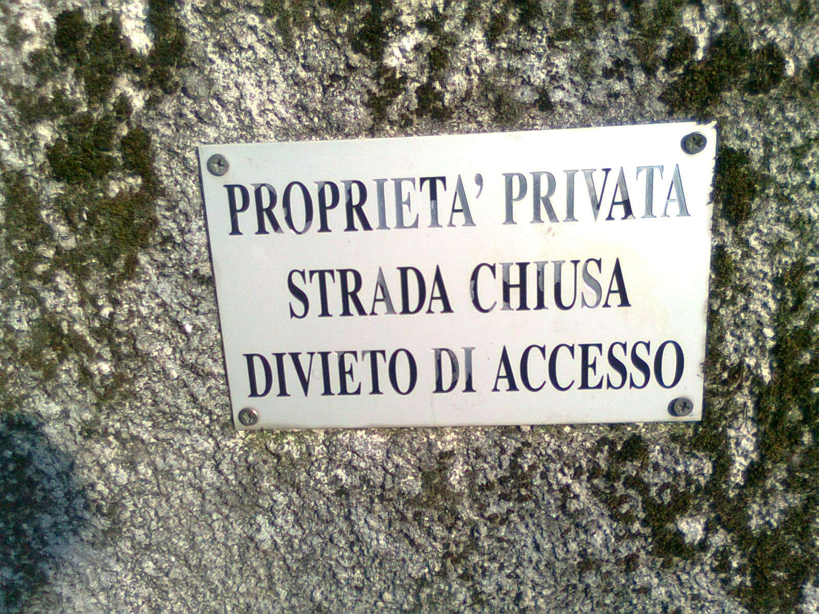 viscontea Divieto