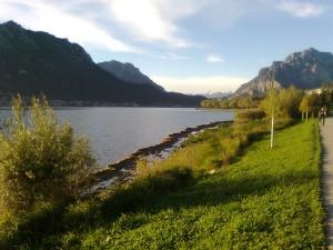 Alghe Lecco