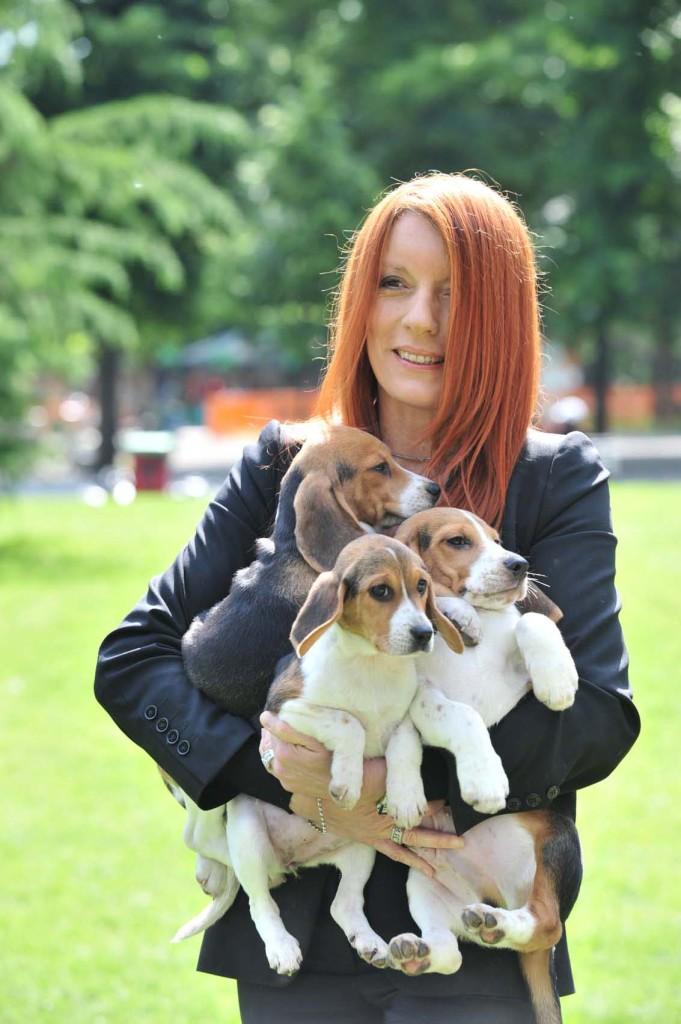 foto 1 on brambilla con cuccioli beagle