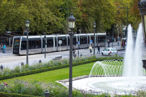 tram sydney Citadis-1