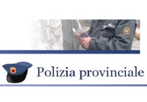 POLIZIA PROVINCIALE LOGO lc