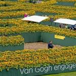 Van-gogh-museum girasoli