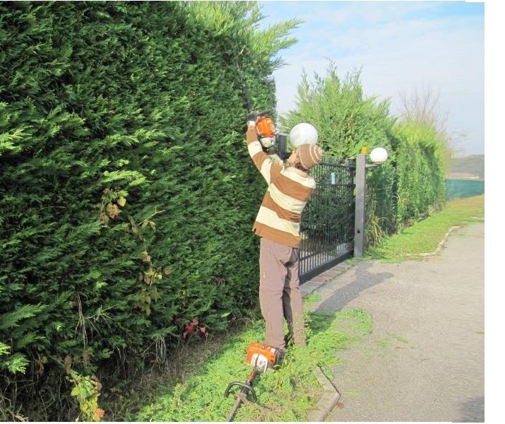 Lavoro giardinieri ora serve la patente un corso degli for Donare un giardiniere