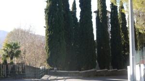 Giardino della Chiesa di San Rocco, Maggianico, 2015
