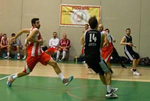 basket amatoi