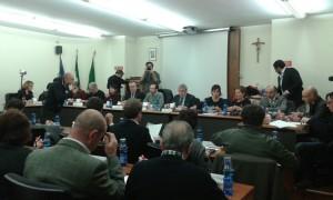 consiglio comunale provincia 1