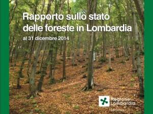 RAPPORTO FORESTE COP