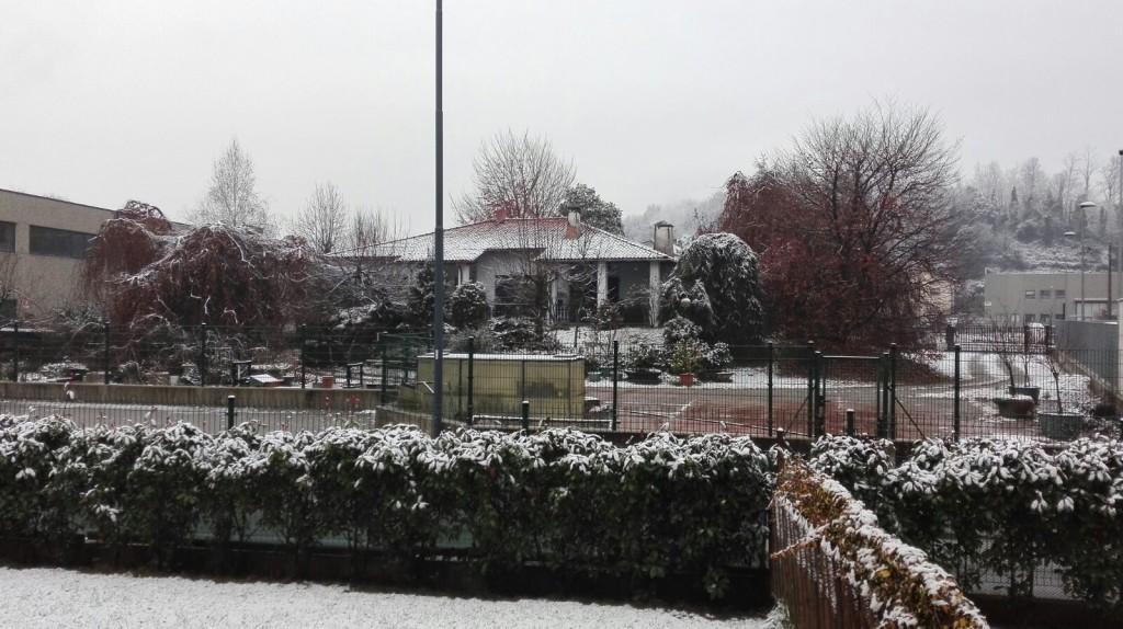 neve oggiono 2016