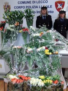 sequestro_fiori polizia locale lecco