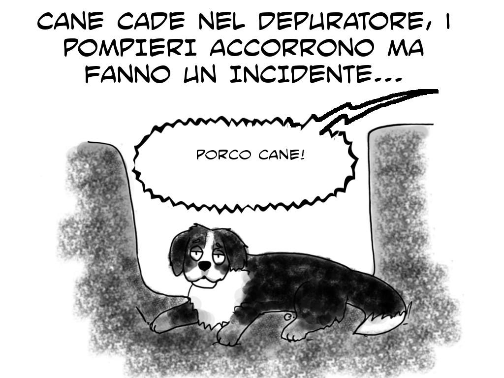 vignetta cane1