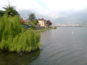Lago Garlate ora