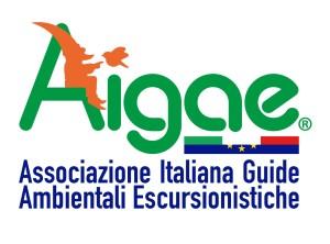 AIGAE_LOGO_social
