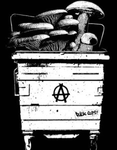 anarchici barro