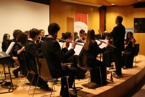 prima il dovere (8) liceo musicale