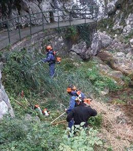 protezione-civile-civate-pulizia-fiume-1