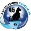 freccia-45