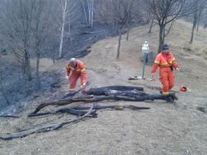 incendio moregallo valmadrera (prot civile) (1)