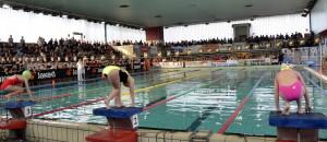 team nuoto città di lecco (2)