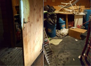 scasso chiosco chiosquito primaluna (12)-horz