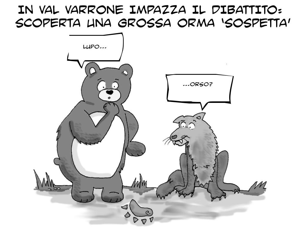 vignetta orso lupo 1