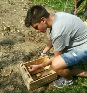 util'estate giovani lavoro (2)