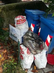 rifiuti lecco 3