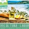 olivocultura lariana locandina