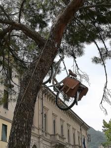 bicicletta sull'albero scherzo piazza garibaldi (2)