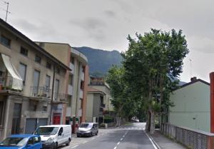 platano taglio_viale_montegrappa