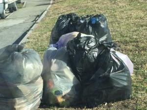rifiuti immondizia