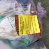 rifiuti immondizia sacco viola