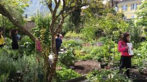 orto botanico valmadrera
