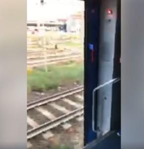 treno trenord porte aperte